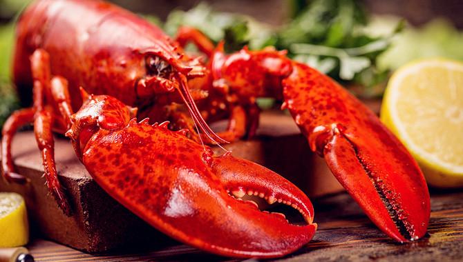 小龙虾电竞进军高校!盘点那些为吃货而生的奇葩专业